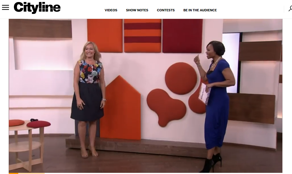 Cityline TV show acoustics segment showing Wobedo sound panels
