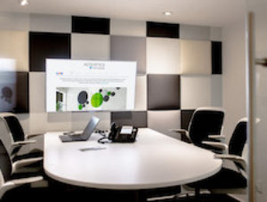 Conference Room Decorative Acoustics LR 84 x300