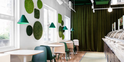 Convex Moss Acoustic Absorbers Restaurant Noise